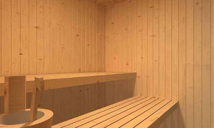 vente sauna traditionnel sauna int rieur haute savoie. Black Bedroom Furniture Sets. Home Design Ideas