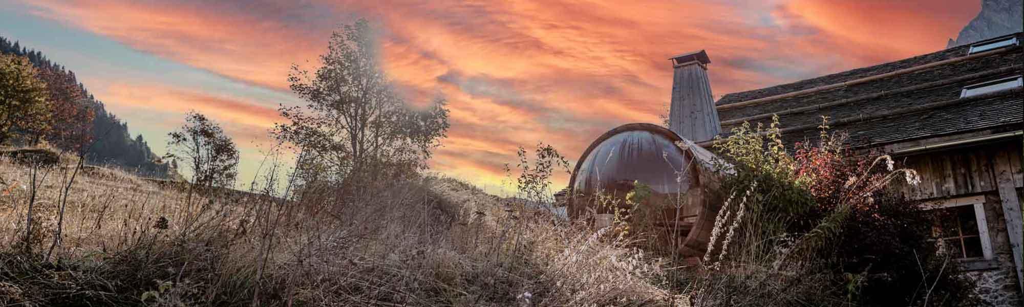 Sauna Sur Mesure Exterieur Design Bois